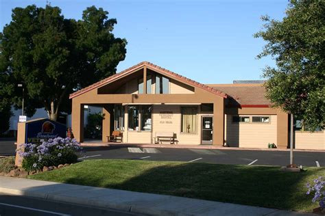 mount comfort animal hospital brentwood ca veterinarians brentwood veterinary hospital