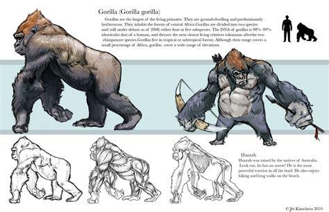 Gorilla Anatomy Muscles