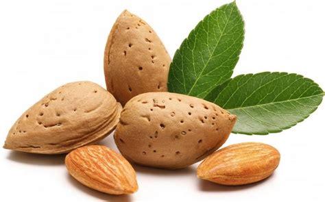 Kacang Almond manfaat kacang almond untuk kesehatan mata