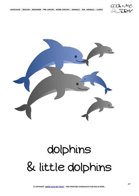 free printable sea animals flashcards sea animals wall cards sea animal flashcard dolphins printable card of dolphins