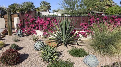 giardino ghiaia ghiaia per giardino 25 idee per realizzare spazi esterni