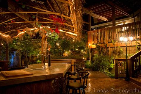 tiki backyard ideas 17 best images about backyard tiki bar s on pinterest