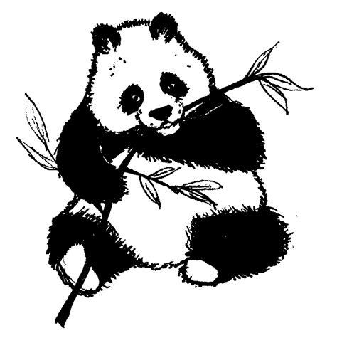 Coloriage 224 Imprimer Animaux Panda Num 233 Ro 434535