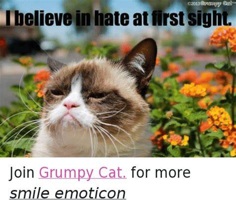 grumpy cat joins cats on lbelieve in at sight join grumpy cat for more