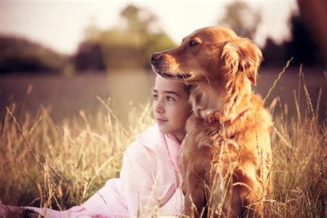 golden retrievers and children top 10 best dogs for page 10