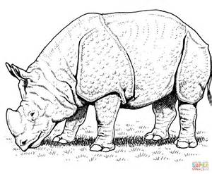 rhino head coloring pages coloring pages