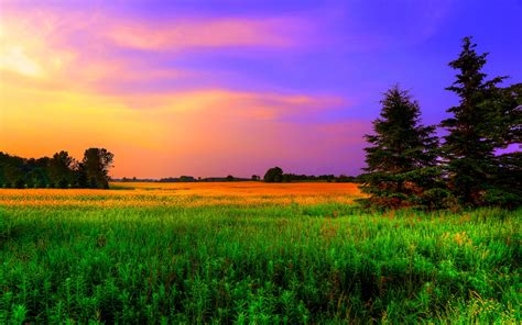 nature colors colorful nature backgrounds www pixshark com images