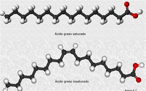 cadenas hidrocarbonadas clasificacion l 237 pidos saturados e insaturados ejemplos de