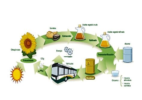 imagenes materiales inteligentes materiales inteligentes para biorrefiner 237 as sustentables