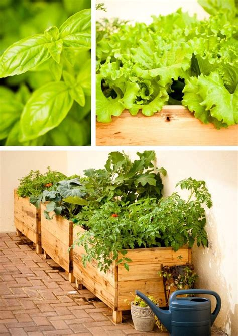 Raised Planters For Vegetables by Raised Vegetable Planter Boxes Woodworking Projects Plans