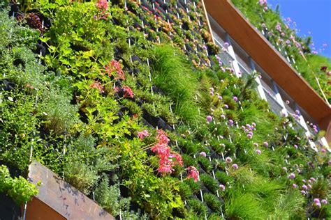 living facade vertical garden florafelt vertical garden