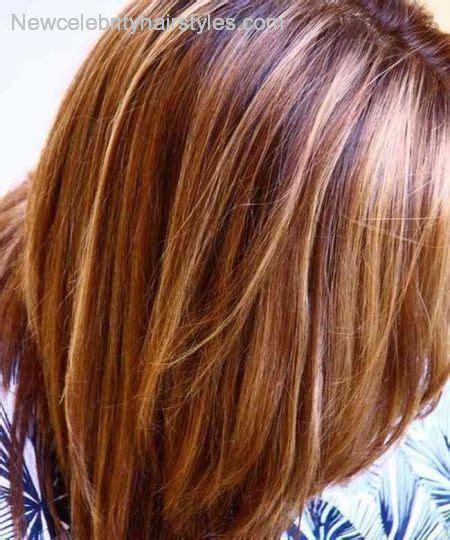 highlights tgar matches a medium auburn dark brown hair with blonde highlights and red lowlights
