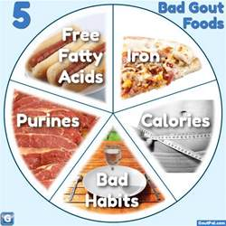what foods cause gout goutpal gout facts