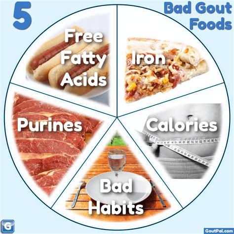 vegetables bad for gout what are your 5 bad gout foods goutpal gout facts