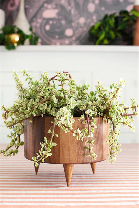 cool planters buy or diy 16 cool planters the garden glove