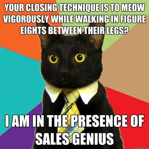 Meow Meme - business cat memes quickmeme