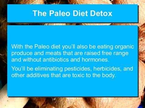 Detox Net Survey by The Paleo Diet Detox