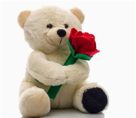 happy teddy day 2018 hd images wallpaper whatsapp dp
