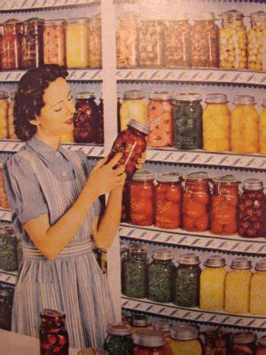 Fashioned On The Shelf by The Vegan From The Vegan Feminist Agitator