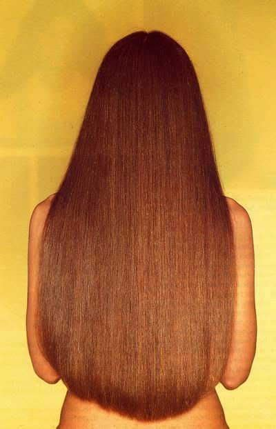 hairstyles for ushape hair cut 17 best images about hair on pinterest long layered hair