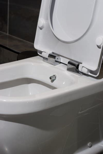 Combined Toilet Bidet And Dryer 82 Best Images About Bathroom Inspiration On
