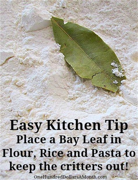 How To Keep Weevils Out Of Pantry by Easy Kitchen Tip Keeping Weevils Out Of Flour Rice And