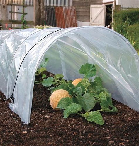 vegetable garden row covers easy poly tunnel row cover west coast seeds