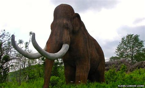 mammoth images mammoths arnold zwicky s