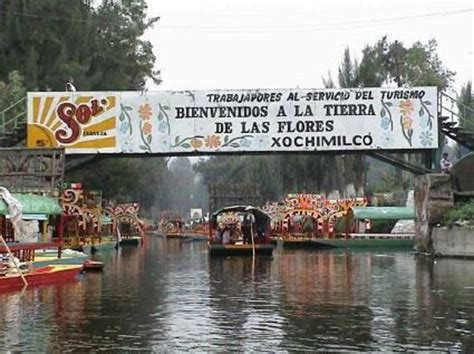 The Floating Gardens Of Xochimilco by Isla De Las Mu 241 Ecas Picture Of Floating Gardens Of