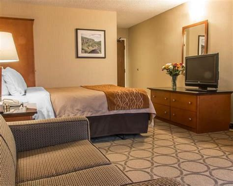 comfort inn promotions comfort inn thunder bay lowest prices promotions