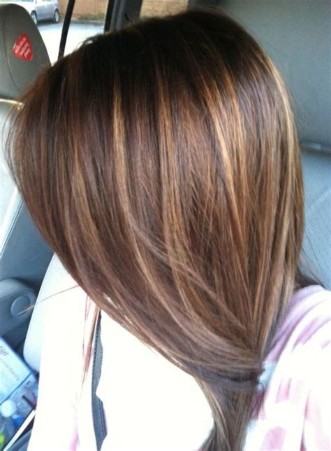 high light color hair brown in love with this hair color brown hair with light brown
