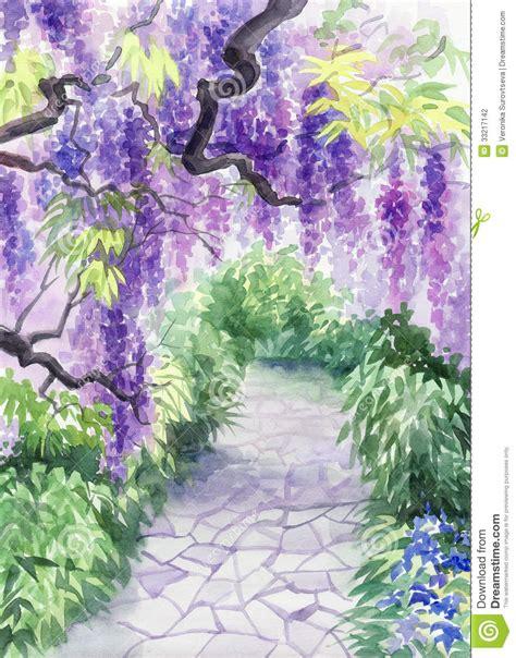 wisteria blossom stock photography image 33217142