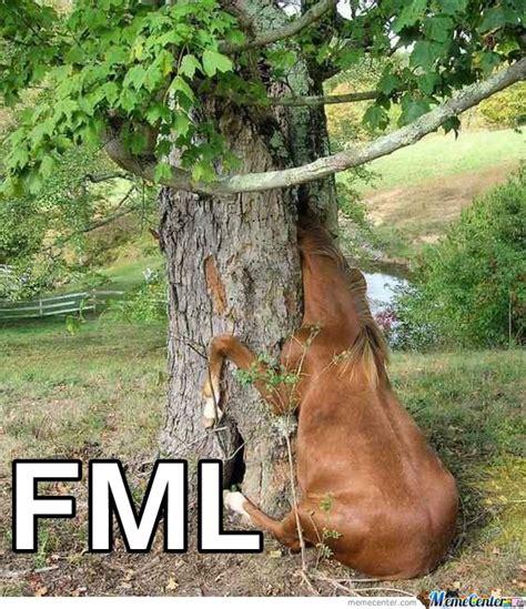 fml meme fml by jsceb meme center