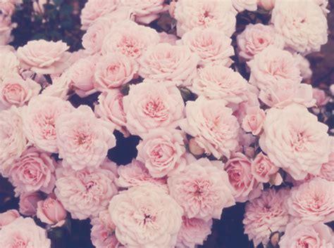 imagenes hipster rosas resultado de imagen para hipster mujer ropa tumblr