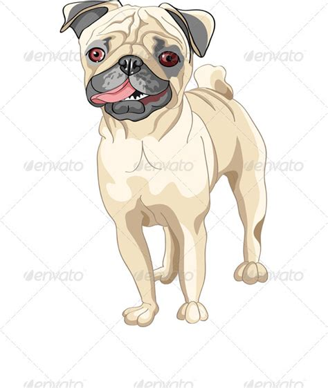 different pug breeds vector sketch smile fawn pug breed graphicriver