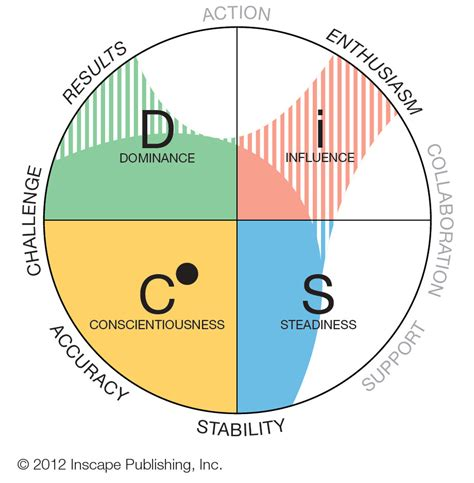 pattern test disc disc personality profile what have you learned today