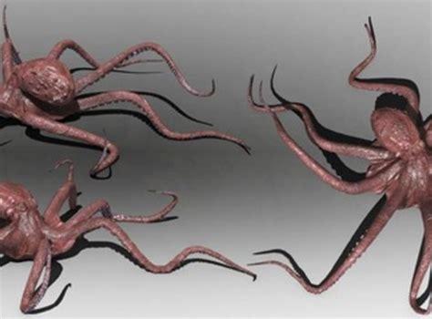 Bantal Sofa Octopus Bone Design 2 octopus 3d model rigged max obj 3ds fbx cgtrader