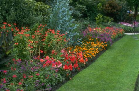 flower garden tips edging design ideas basic gardening tips for beginners