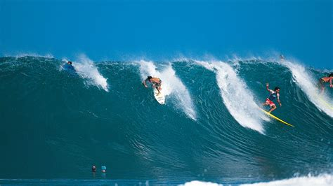 Ripcurl Now Searching searching for tom curren the search
