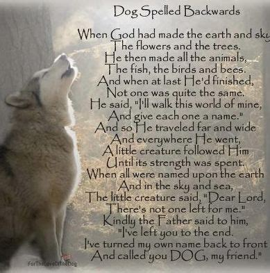 poems about dogs beautiful poem about dogs doggie doggie doggie