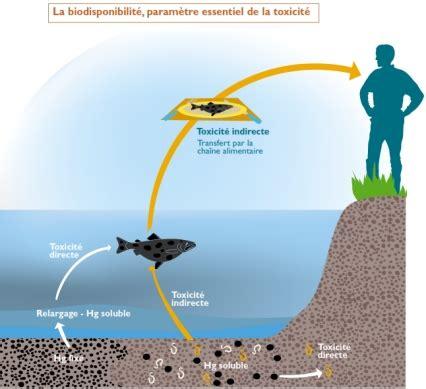 1359867961 l eau de mer milieu organique evolution3 1