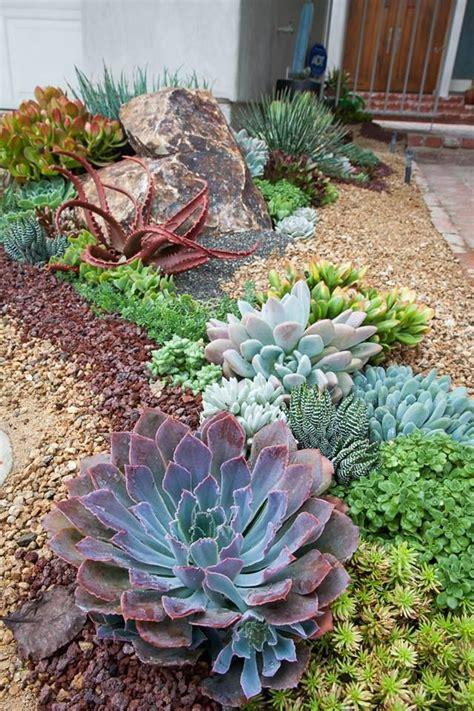Sukkulenten Garten by New Front Entry Succulent Tapestry In La Jolla Photo Kyle