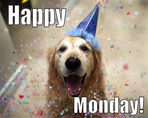 Happy Monday Meme - happy monday golden retriever quickmeme