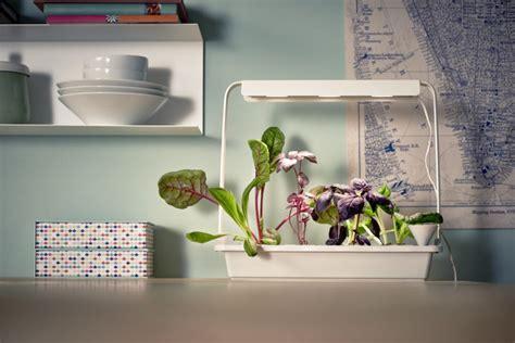 ikea krydda zelf groente kweken met ikea s indoor moestuin eetblog nl