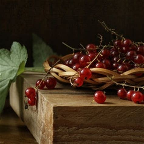 fruit o fresh pitura 17 best images about of painting fruits wine