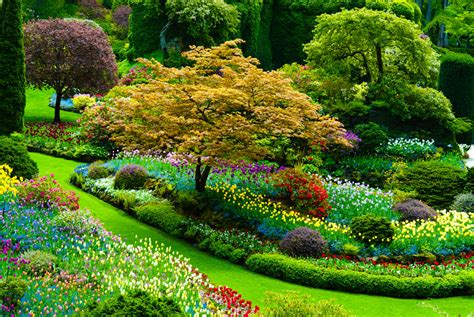 Photos Flowers Gardens Bei 223 En Gedanken The Best Of Scenic Country And Landscapes