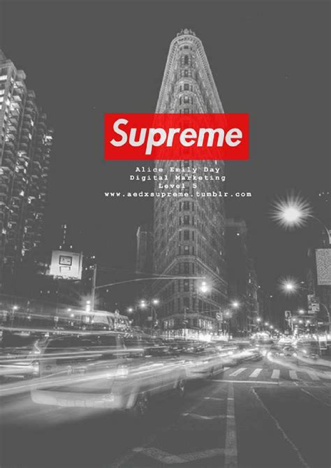 libro supreme downtown new york supreme case study by alice emily day issuu