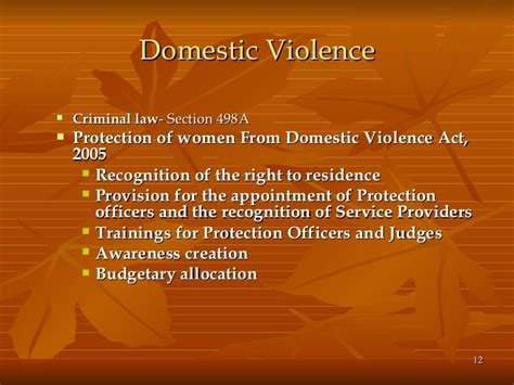 section 12 domestic violence act women s welfare legal provisions