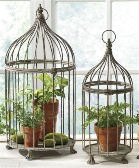 Home Interior Bird Cage by Using Bird Cages For Decor 66 Beautiful Ideas Digsdigs