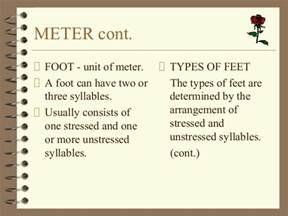 feet in a meter poetry terminology